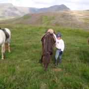 Reiterurlaub in Island